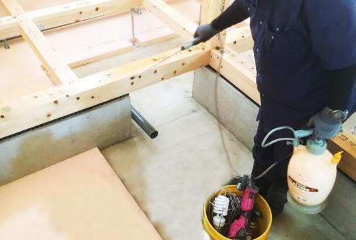 防蟻工事はホウ酸を採用